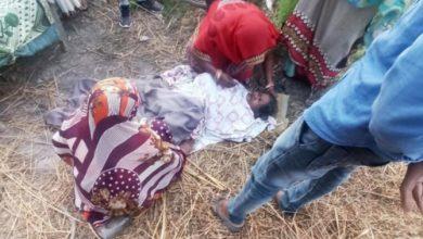 Photo of उत्तर प्रदेश फतेहपुर मार्च को बिंदकी नगर तहसील के पीछे नई बस्ती में महिला छत से गिरकर हुए गंभीर रूप से घायल |       ( राजकुमार विश्वकर्मा की खास रिपोर्ट )